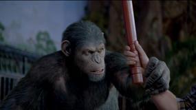 """Reżyser """"Planet Małp"""" poszukiwany"""