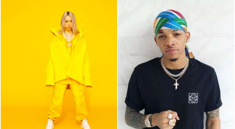 American star Billie Eilish sings Tekno's 'Agege' [Video]