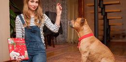 Kalendarze adwentowe dla psów!