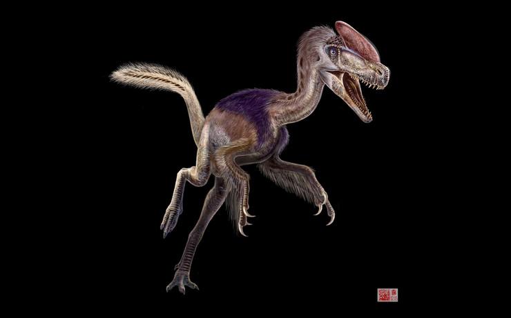 pernati dinosaurusi10 Guanlong foto tanjug ap