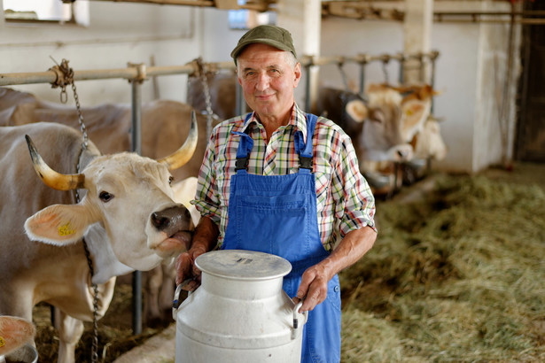 W ubiegłym sezonie wyprodukowano w Polsce 10,5 miliarda kilogramów mleka.
