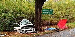 Horror na drodze. Citroen roztrzaskał się o drzewo. Zginęła kobieta