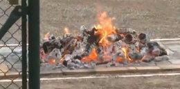 Boruc chodzi po rozżarzonych węglach VIDEO