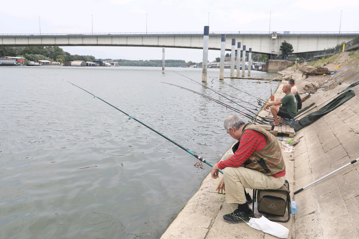 Ribari, skok s mosta, Sava, Bankov most
