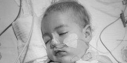 Na leczenie Leosia zebrano milion złotych. Chłopiec zmarł dwa dni przed świętami. Wzruszający apel rodziców przed pogrzebem