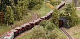 Ta kolej jest 87 razy mniejsza niż w rzeczywistości!