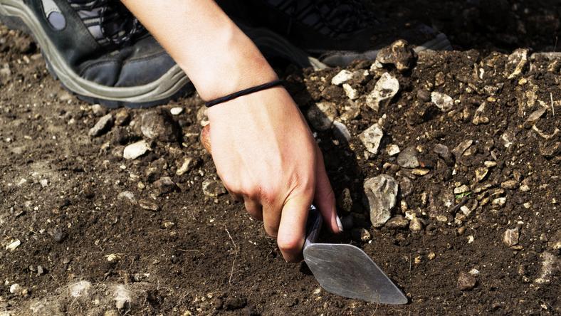 Piknik archeologiczny na Uniwersytecie Rzeszowskim