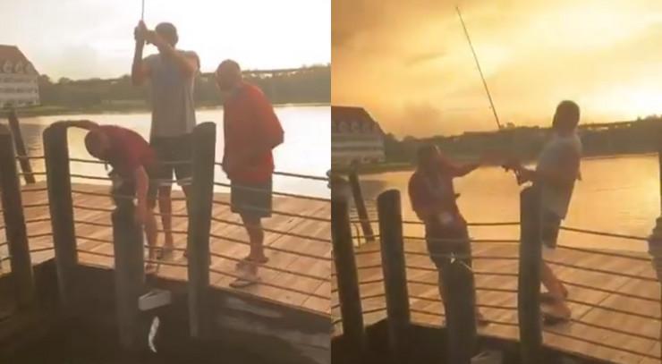 Bobi na pecanju