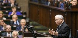 Kaczyński jak Piłsudski? Mocne słowa Schetyny