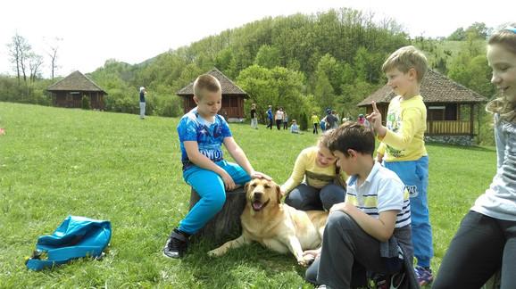 Za decu najveće uživanje sa domaćim životinjama