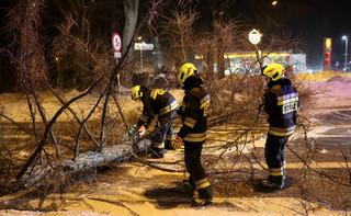 Blisko 1200 interwencji strażaków związanych z silnym wiatrem. 9 osób zginęło