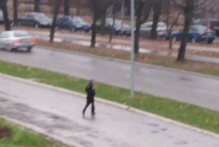 policajac-prelazak-ulica