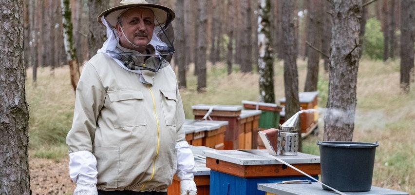 Pszczelarz, któremu wytruto pół miliona pszczół dostał pomoc, której się nie spodziewał