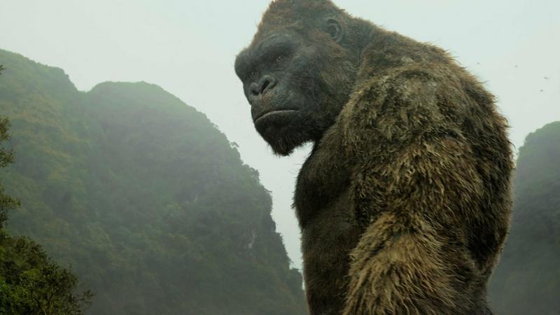 """""""Kong: Wyspa Czaszki"""" - kadr z filmu"""