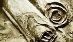 REŠENA DREVNA MISTERIJA Konačno dešifrovan svitak sa Mrtvog mora koji nam je otrkio NEOBIČNU TAJNU