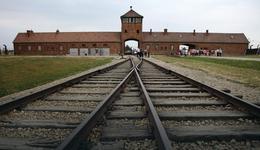 Izraelczyk znieważył pomnik ofiar w b. KL Birkenau