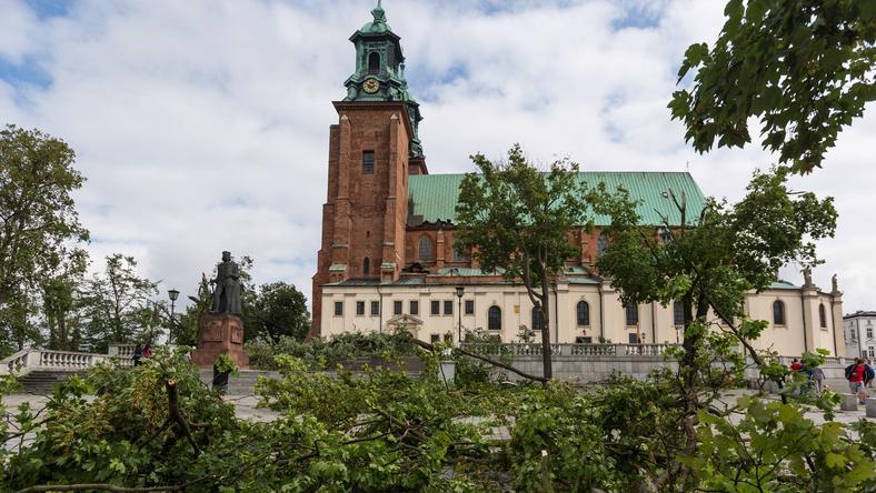 Katedra w Gnieźnie po nocnej nawałnicy