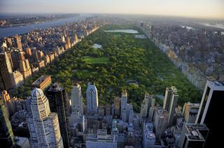Koronawirus w USA. Nowy Jork przedłuża zakaz eksmisji do 20 sierpnia