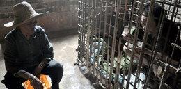Matka trzyma syna w klatce. Boi się go!