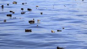 W 2050 roku w morzach będzie więcej plastiku niż ryb
