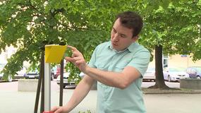 Polski wynalazek, który uchroni przed zawaleniem dachu