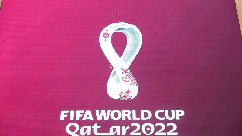 FIFA Qatar 2022 World Cup