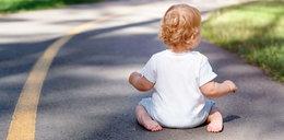 Bosy dwulatek spacerował po drodze. Mogło dojść do nieszczęścia!