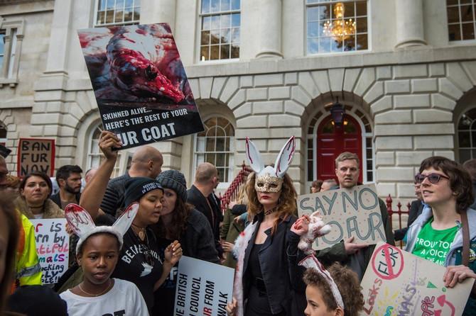 Demonstratori su bili jasni