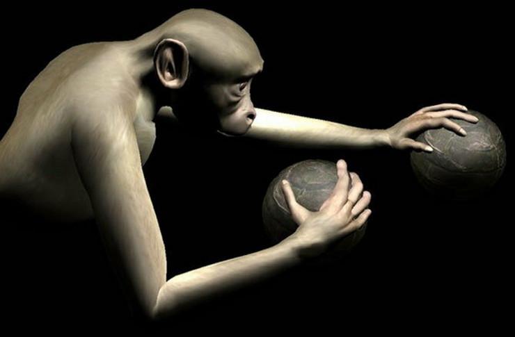 398070_majmuni-pokretanje-ruku-umom-foto-univerzitet-djuk