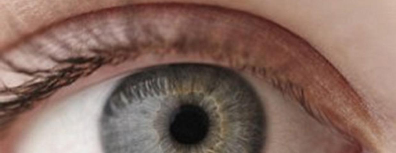 zöldségek és gyümölcsök a látáshoz myopia bates módszer gyakorlása