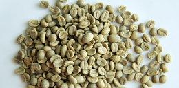 Jakie jest działanie zielonej kawy?