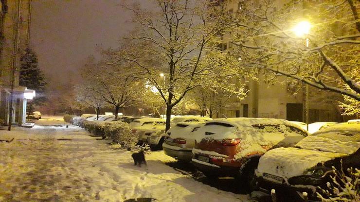 Sneg Beograd 7.1