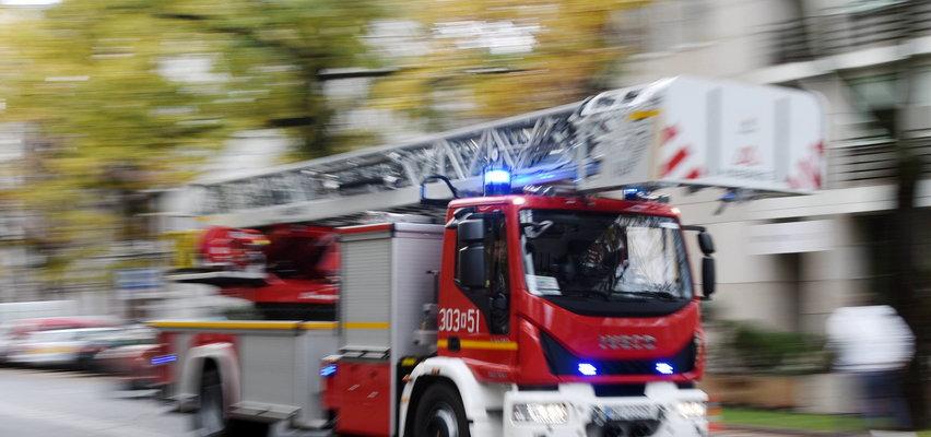 Paralotniarz zawisł na drzewie. Z pomocą ruszyli strażacy. [FILM]