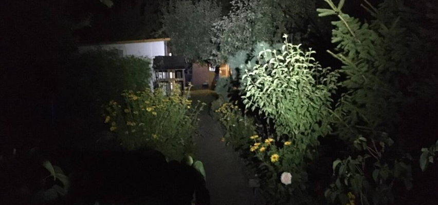 Brutalny samosąd w Pleszewie. 43-latek zamordowany na działkach