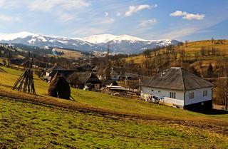 Kontrowersyjna ustawa. Obcokrajowcy nie kupią już ziemi na Ukrainie