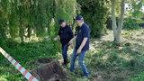 Poszukiwania Iwony Wieczorek. Znaleziono kości. Śledczy ustalili ich pochodzenie