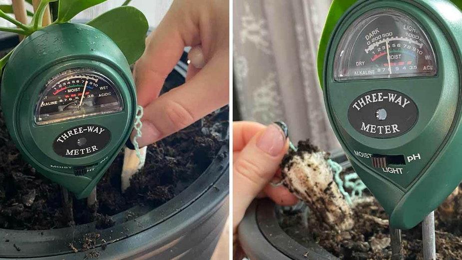 Tampony uratują przelane kwiaty