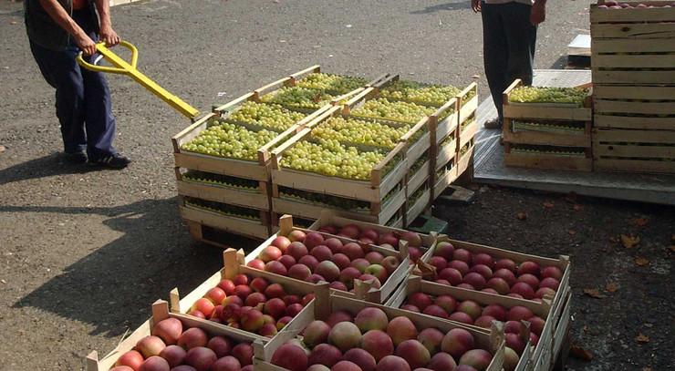 pokrivalica, zaplena voća i povrća