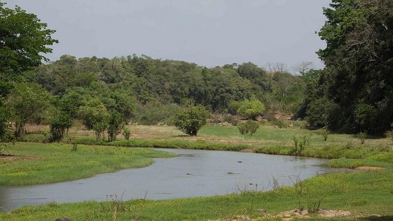 Park Narodowy Comoe, Wybrzeże Kości Słoniowej