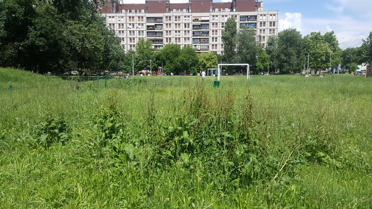 Krpelji se kriju u travi