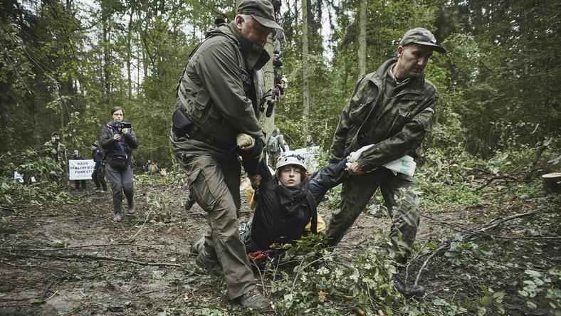 Białowieża: Udana blokada w Puszczy Białowieskiej. Maszyny wycofały się z miejsca wycinki