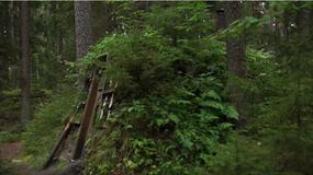 Dzikie wakacje w szwedzkim Skinnskatteberg