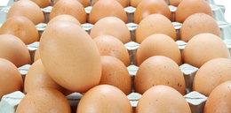 Rośnie liczba zachorowań na salmonellę. Kto jest temu winien?