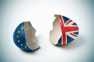 Europosłowie PO i PiS zgodnie: Traktat Francji i Niemiec to efekt brexitu