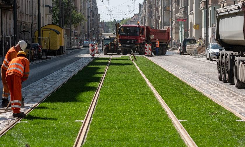 Poznaniacy chcą, żeby stolica Wielkopolski była zielona
