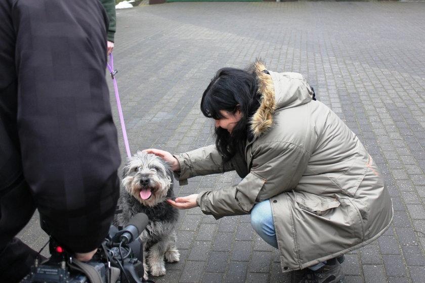 Psy ze schroniska znalazły dom w ZOO