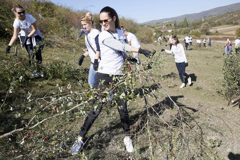 Zaposleni kompanije Carlsberg Srbija obnavljaju stanište orla krstaša