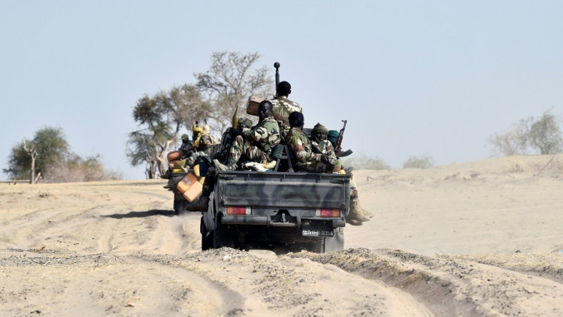 A joint military regional force has found Boko Haram a tough nut to crack (AFP)
