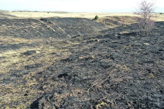 BELA CRKVA: Požari uništili Zagajička brda i područje Karaš Nera
