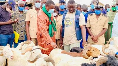 Tabaski 2021 : L'approvisionnement en moutons menacé